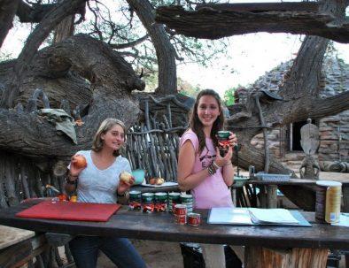 Ökenelefanter i Damaraland