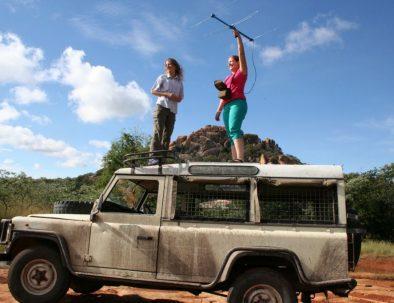 Räddningscenter vilda djur i Bulawayo