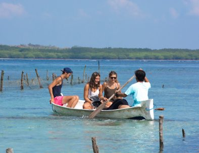 Bevarande av Havssköldpaddor på Bali