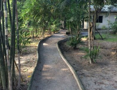 Räddningscenter vilda djur i underbara Thailand
