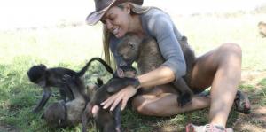 Räddningscenter för vilda djur