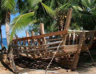Undervisning, samhällsprojekt, lemurer och mangroveträsk