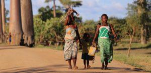 Djur, natur och samhällsprojekt i härliga Madagaskar
