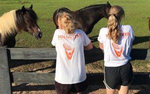 Hästranch med djurterapi för barn