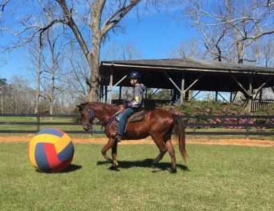 Hästranch i Mississippi med djurterapi för barn
