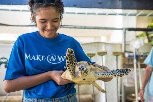 Rehabiliteringscenter för havssköldpaddor på Stora Barriärrevet