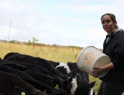 Hållbarhets- och samhällsprojekt i Cork på Irland
